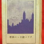 『ナリン殿下への回想』本体表紙